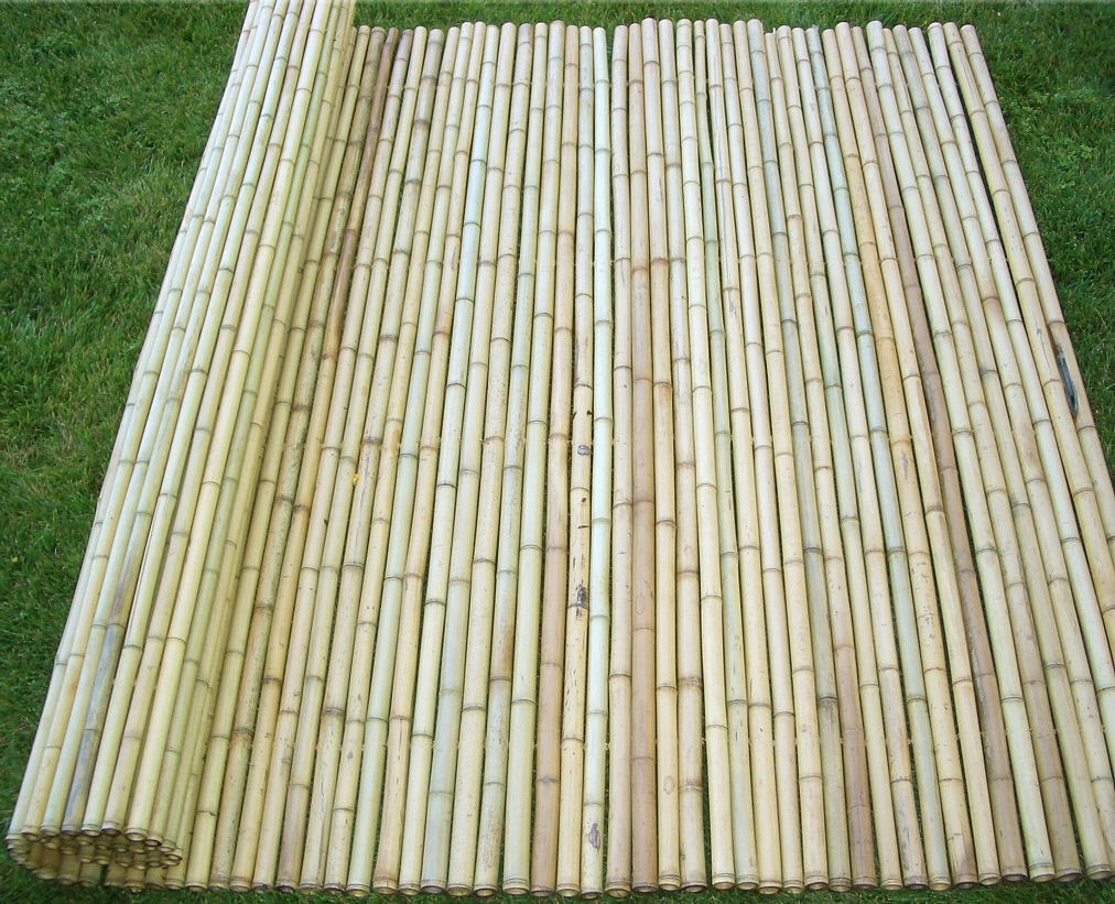 Image of: Bamboo Fence Roll Long