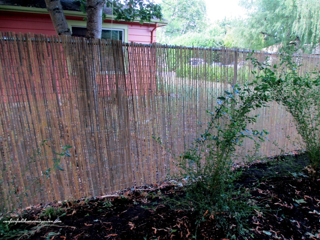 Bamboo Fence Roll Plans