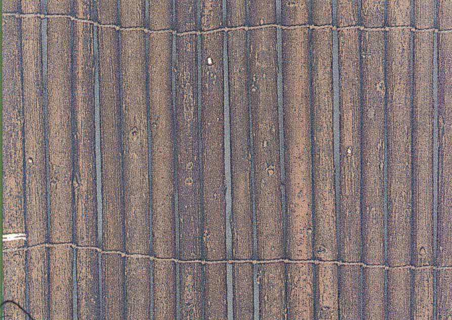 Image of: Bamboo Fence Roll Willow