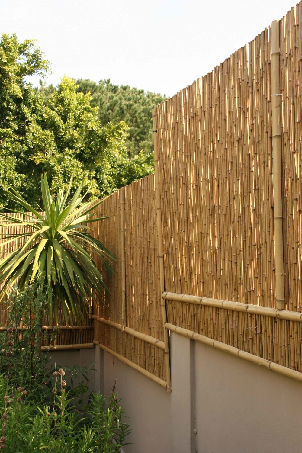 Image of: Bamboo Fencing Design