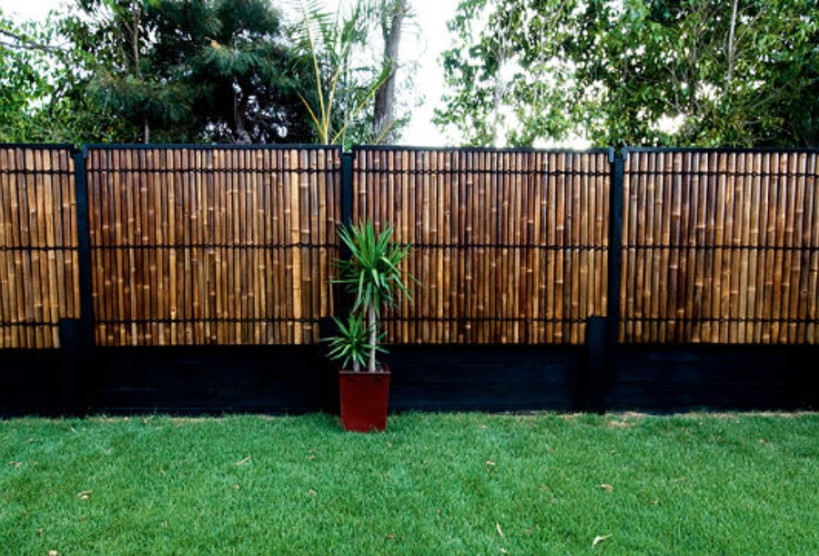 Image of: Bamboo Fencing Garden