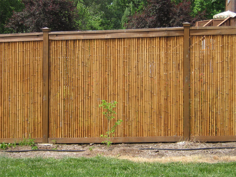 Image of: Bamboo Fencing Panael