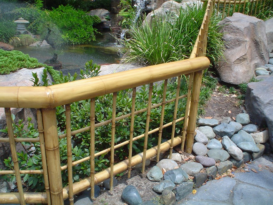 Image of: Bamboo Fencing Pergola