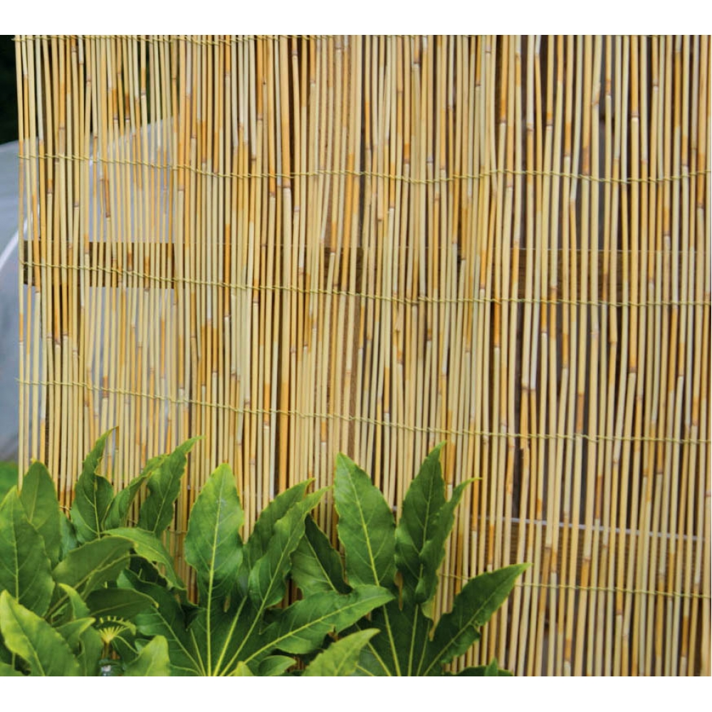 Image of: Creating Bamboo Privacy Fence