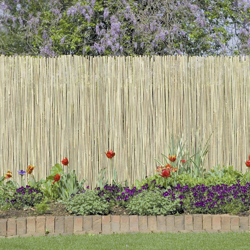 Image of: Design Bamboo Privacy Fence