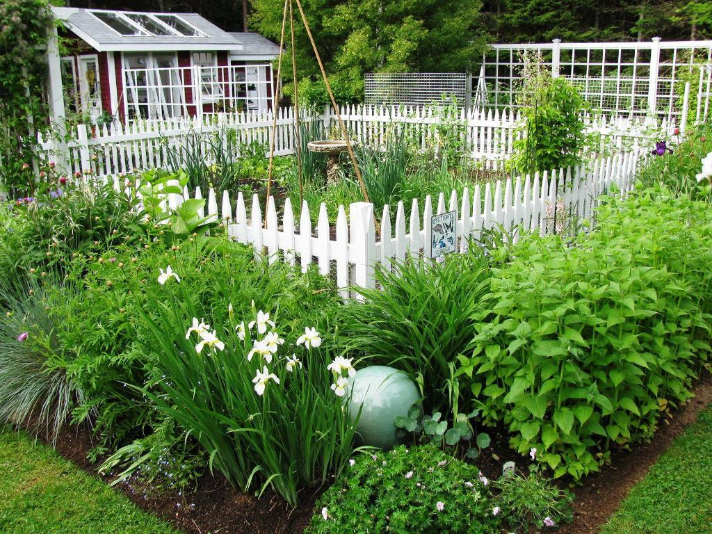 Image of: Garden Border Fence Pictures