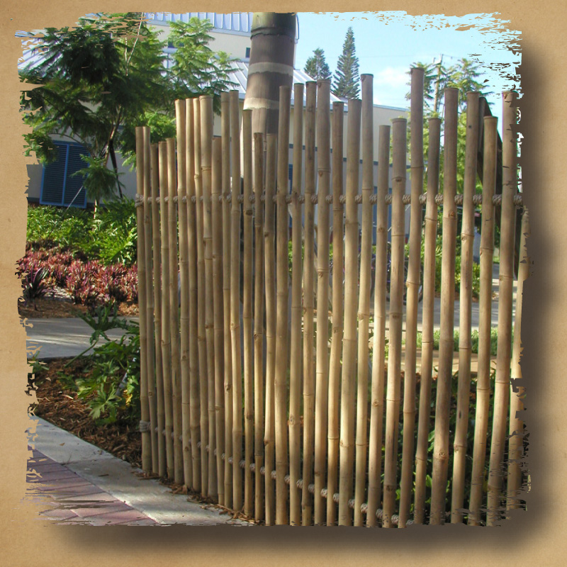 Image of: Rustic Bamboo Fencing