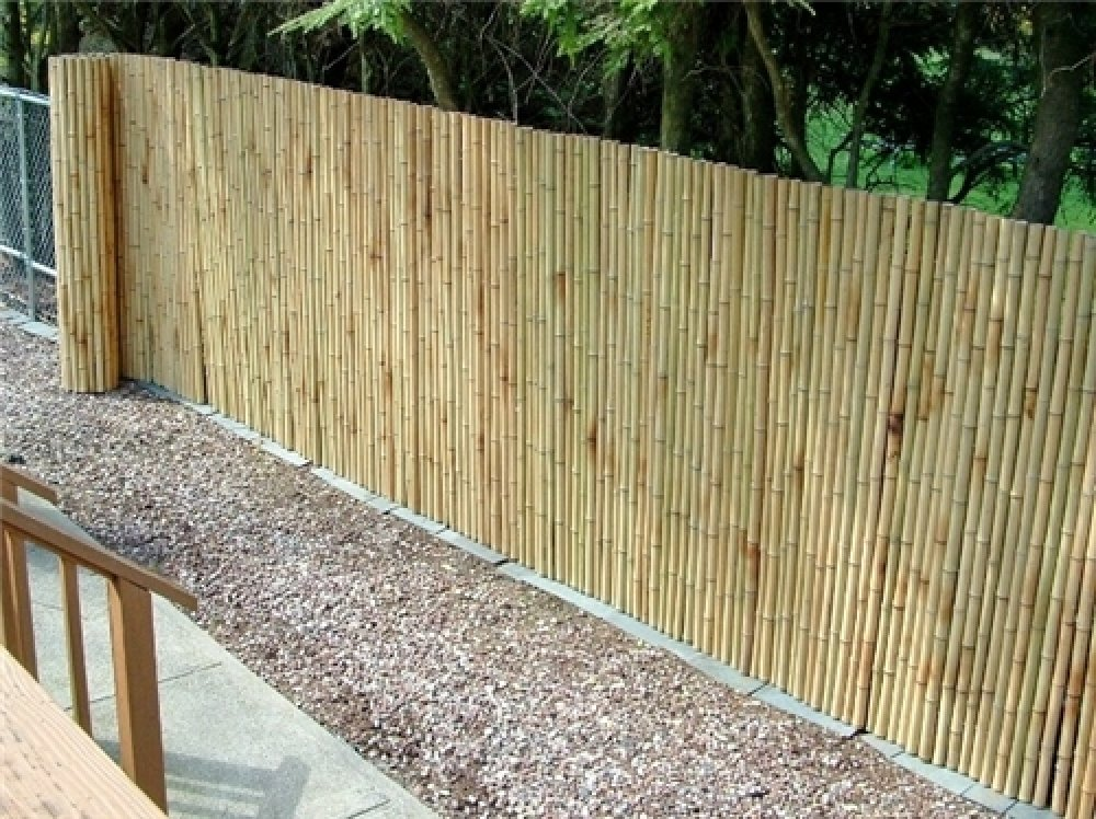 Image of: Simple Bamboo Fencing