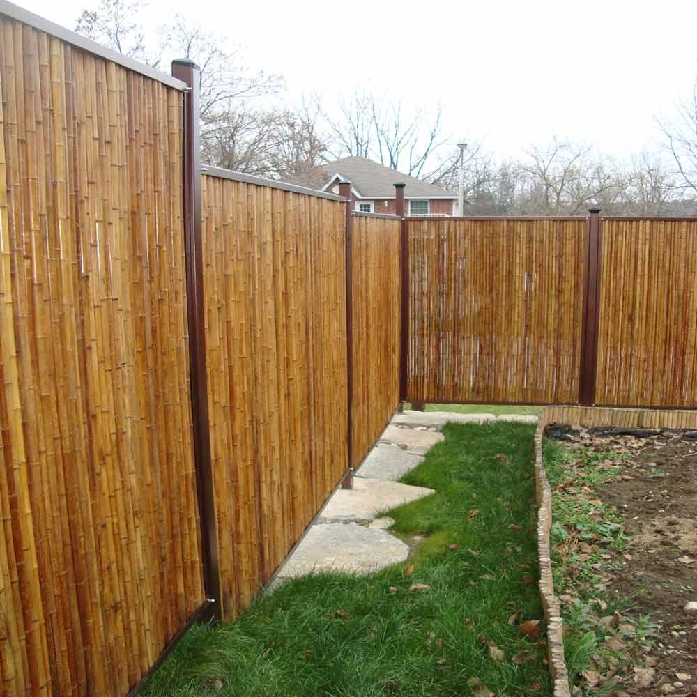 Image of: Trend Bamboo Privacy Fence