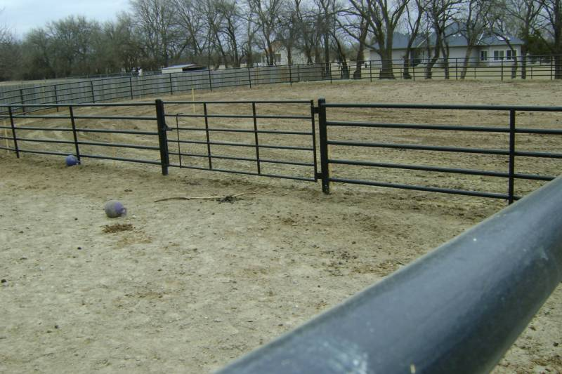Cattle Fencing Black