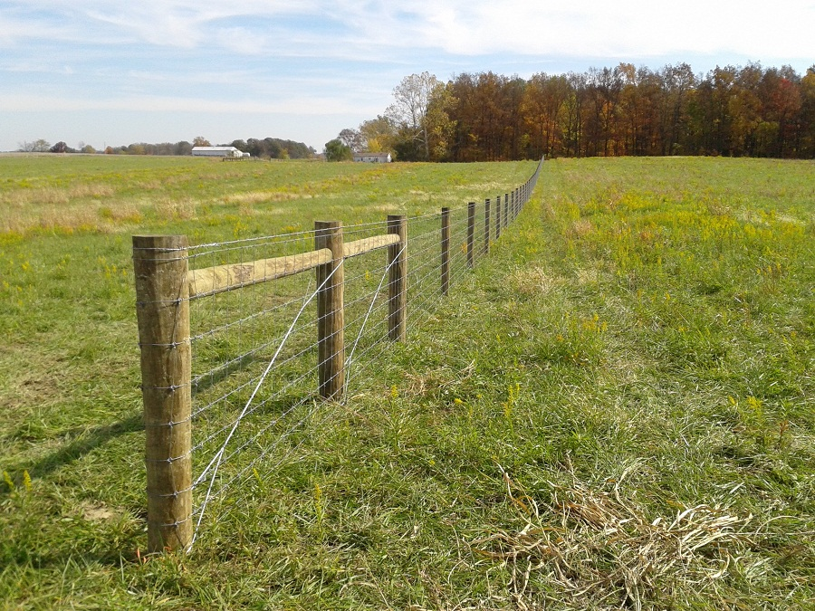 Image of: Cattle Fencing Woven