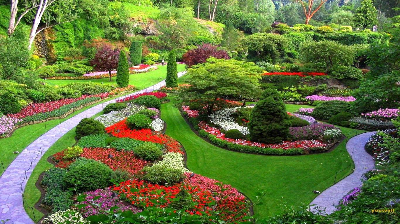 Image of: Attractive Natural Garden Design