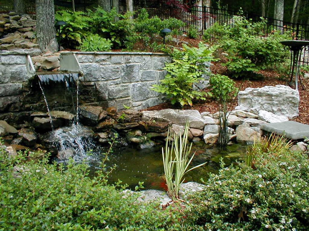 Image of: Awesome Plants Suitable For Around Waterfall