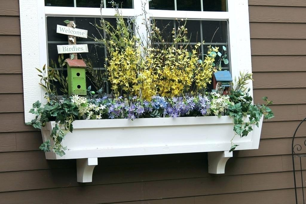 Image of: Awesome Window Box Ideas