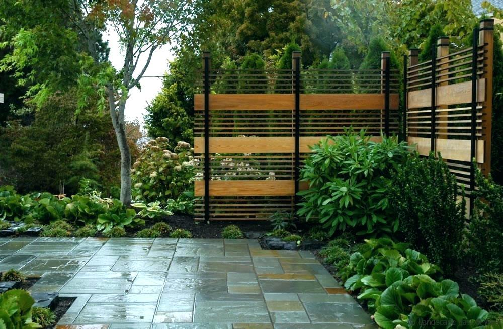 Image of: Backyard Fence Plant Ideas