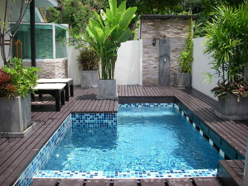 Image of: Backyard Swimming Pools Pictures