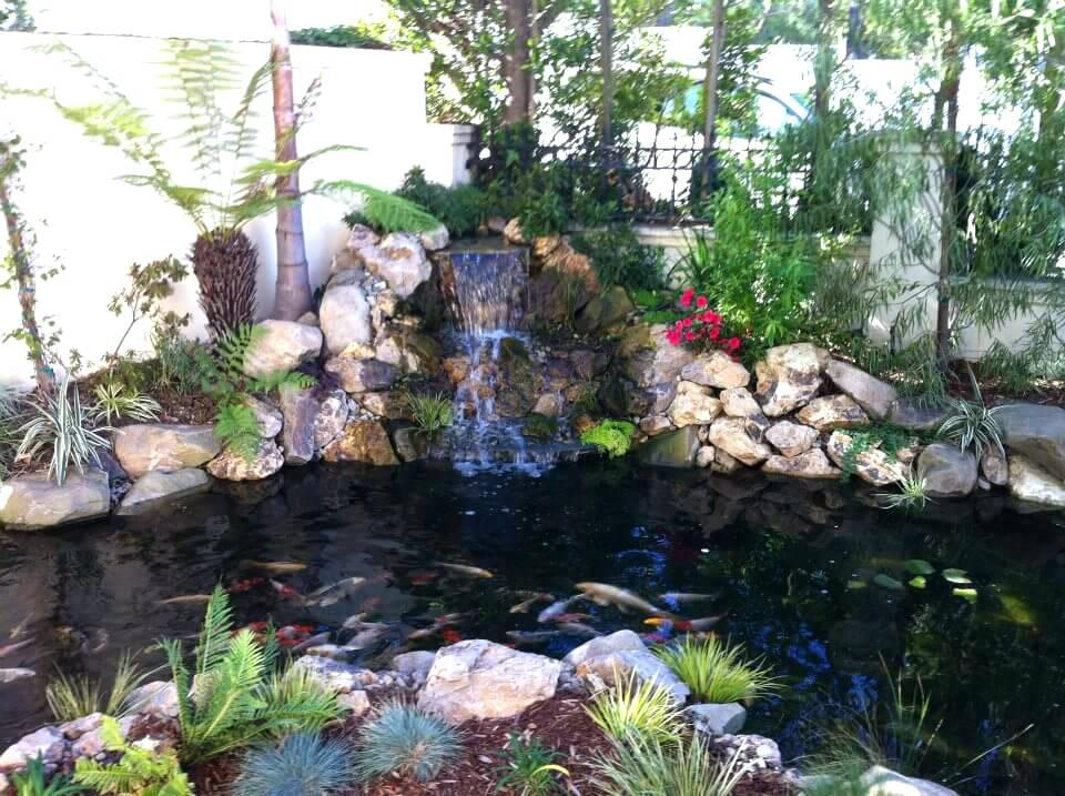 Image of: Backyard Water Features Ideas