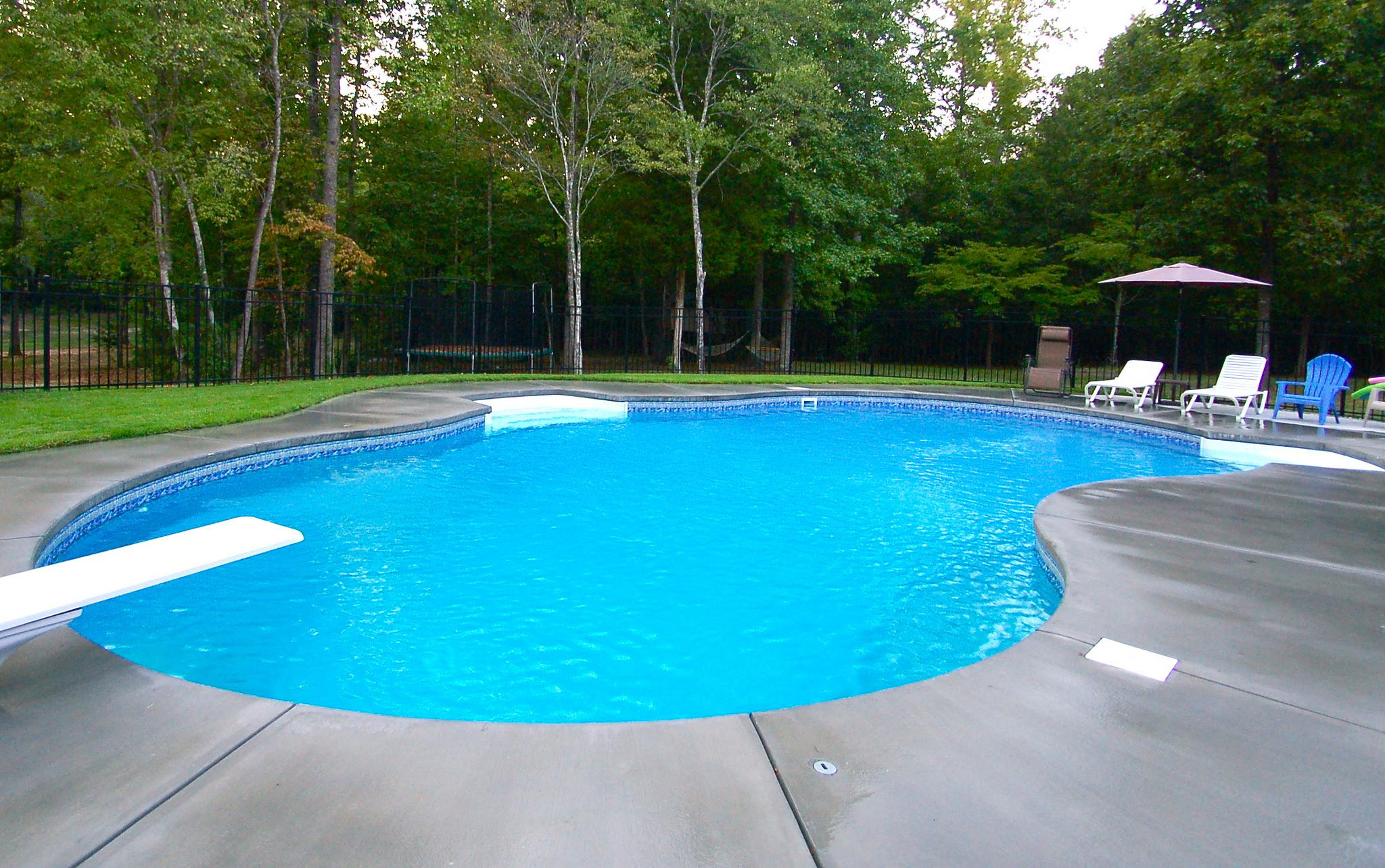 Image of: Best Backyard Swimming Pools