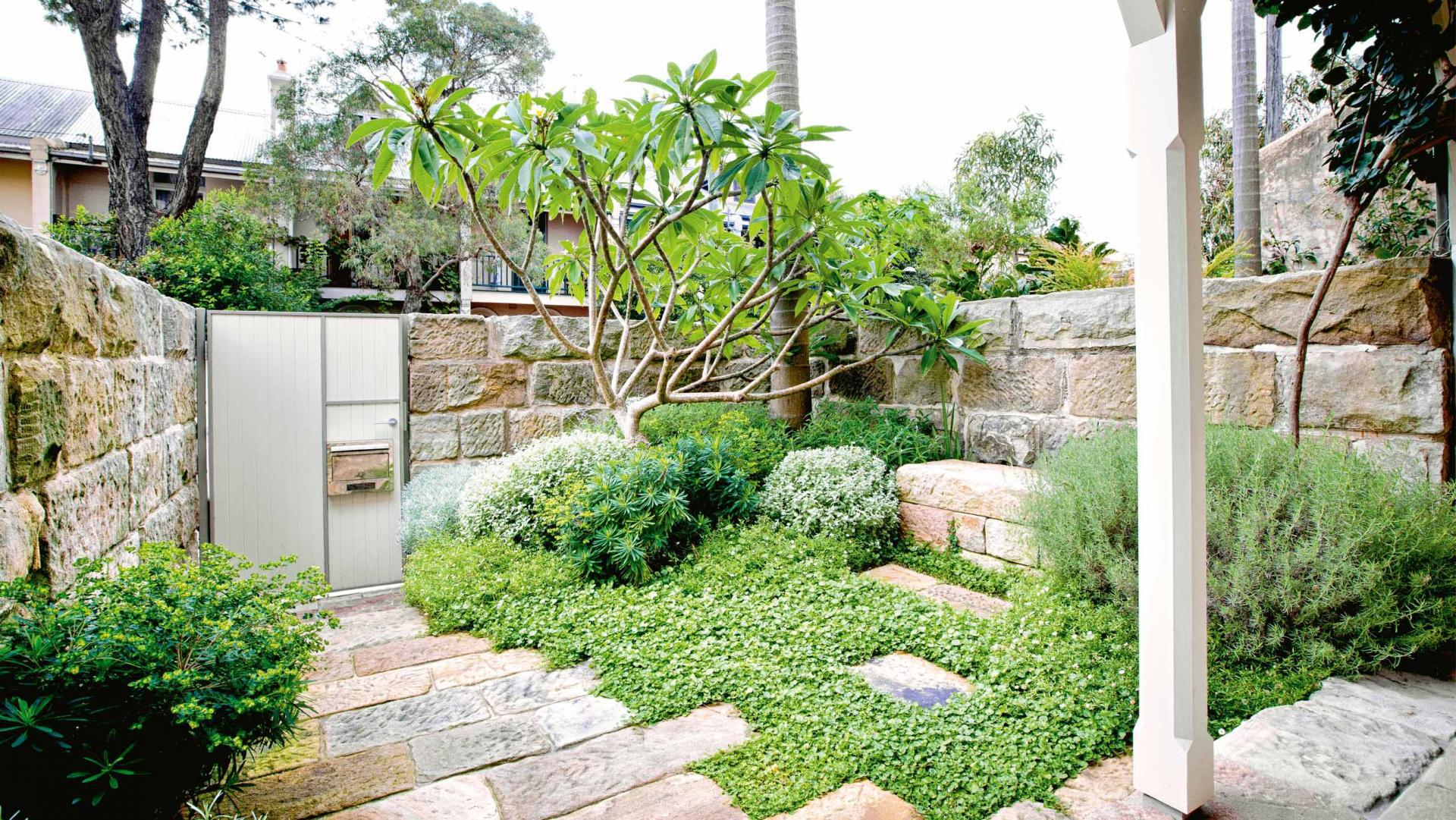 Image of: Best Courtyard Gardens Ideas