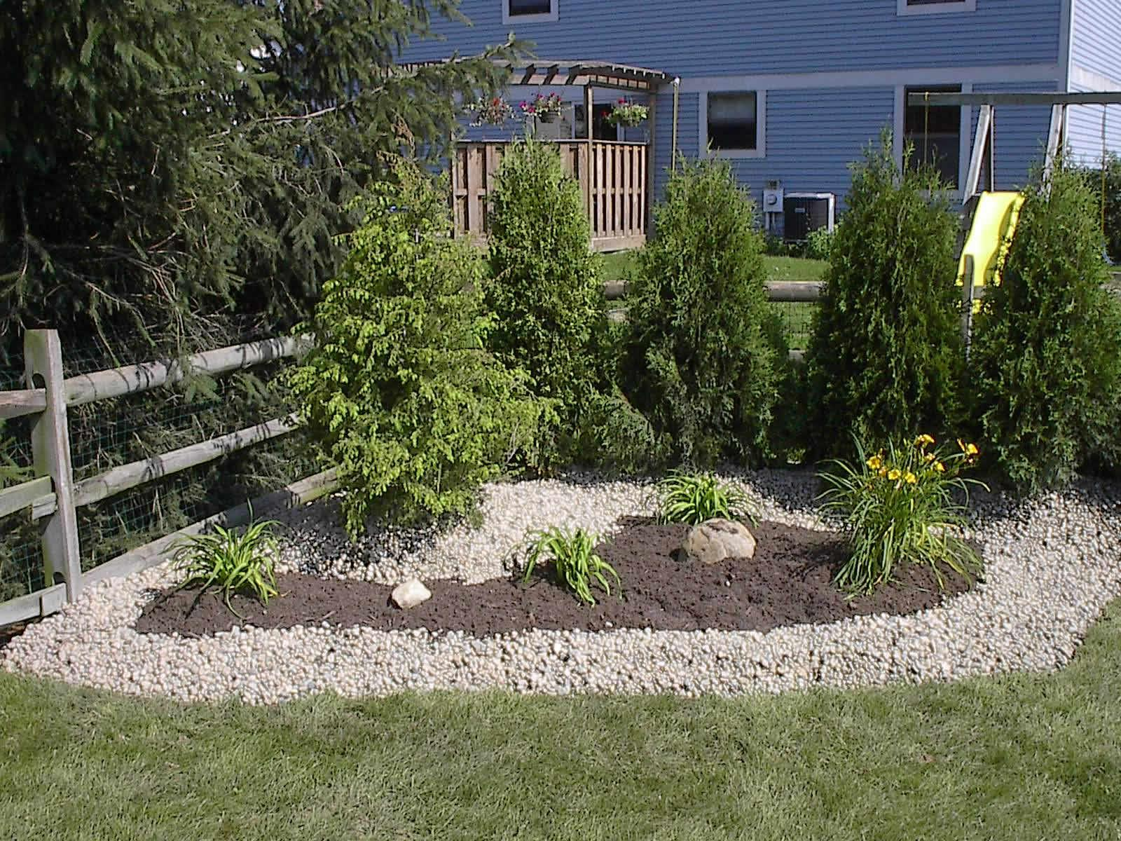 Image of: Best Small Trees For Landscaping