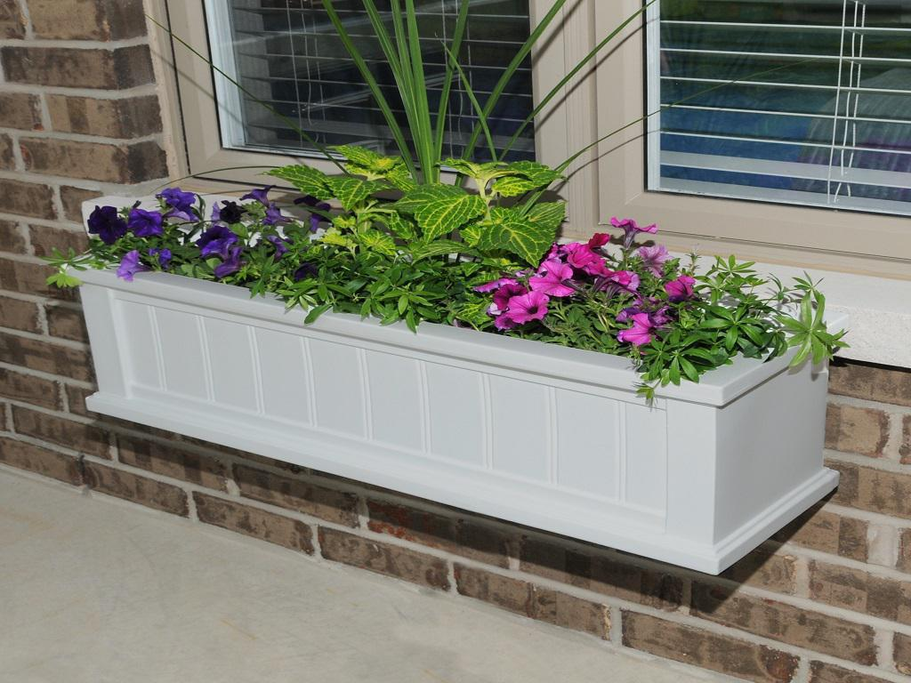 Image of: Best Window Box Ideas