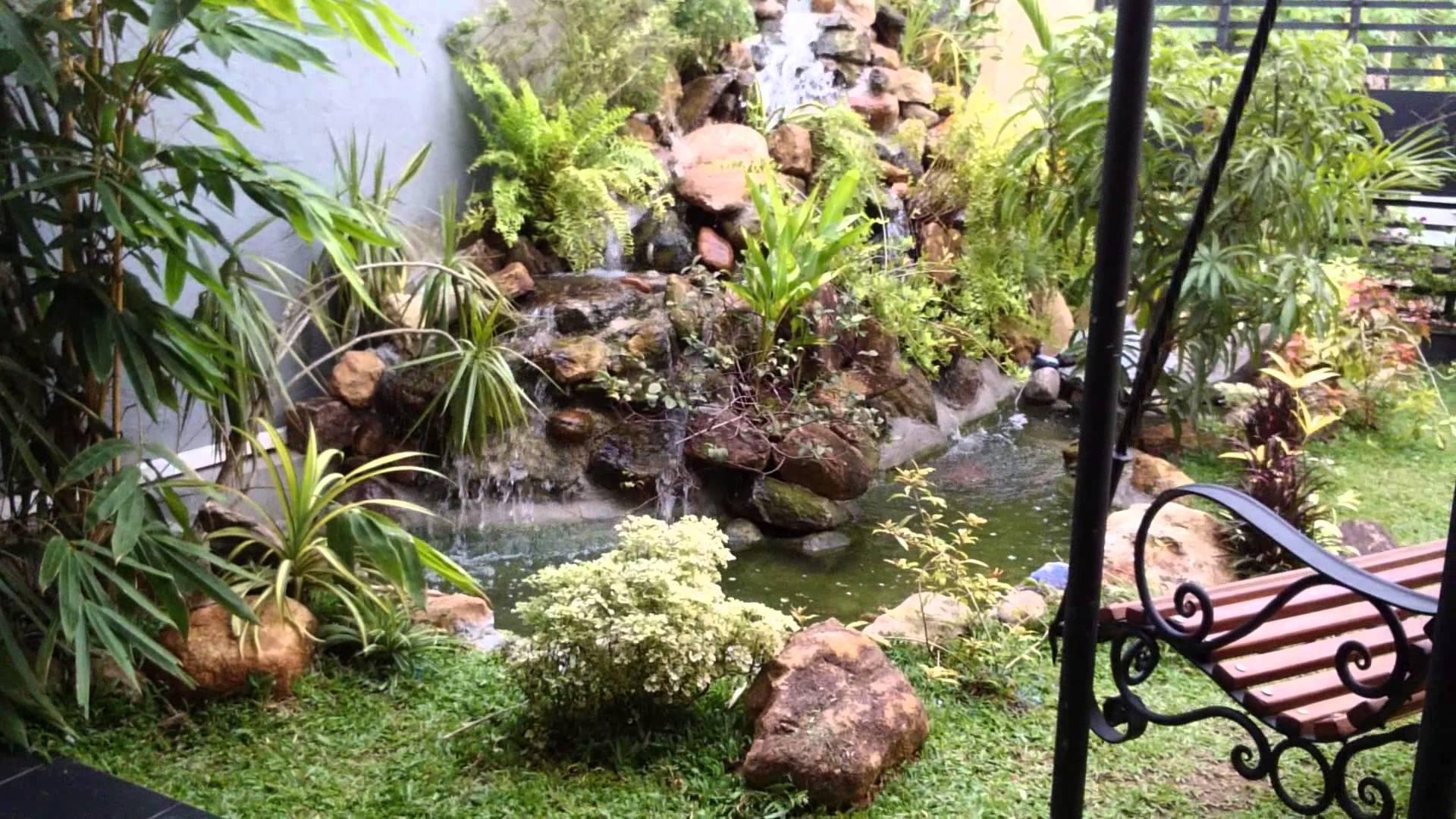 Image of: Elegant Plants Suitable For Around Waterfall