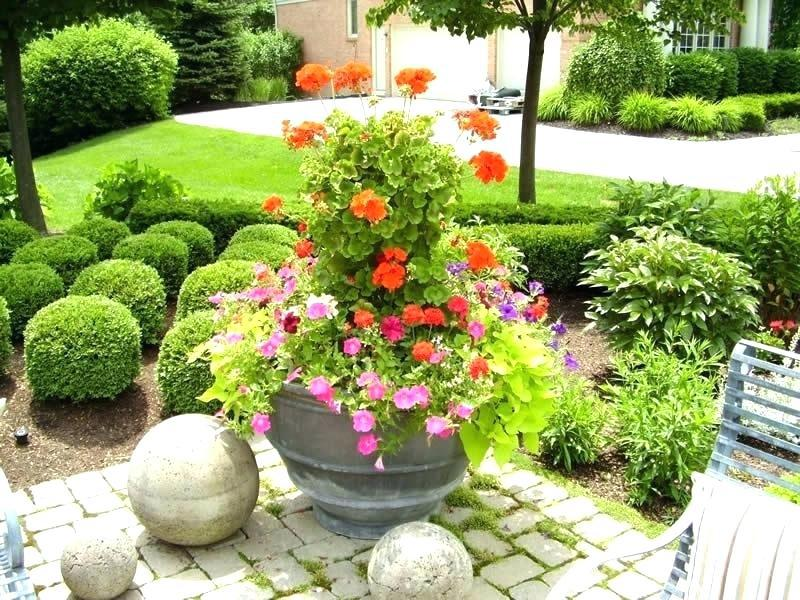 Image of: Landscaping With Only Potted Plants