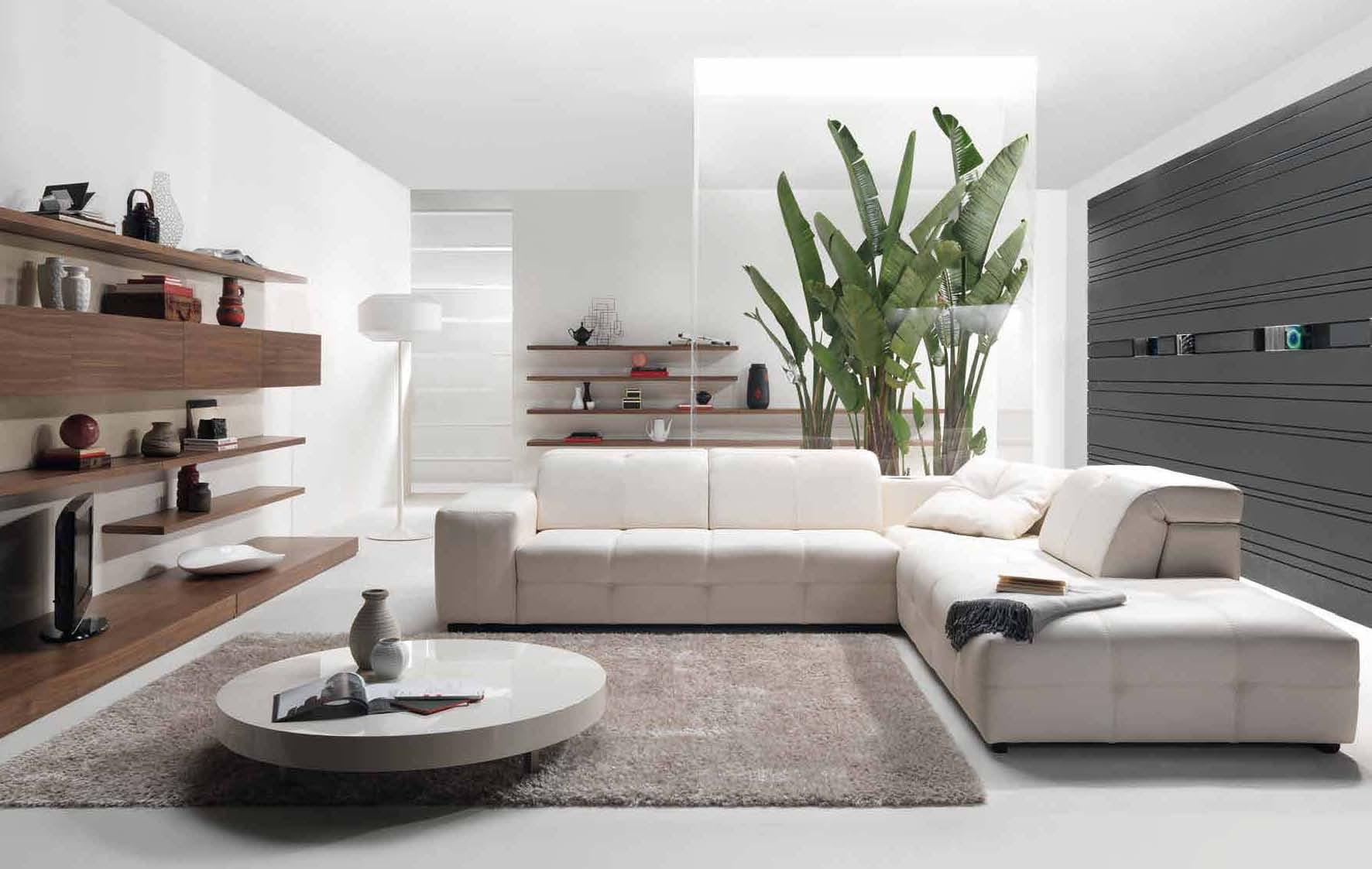 Image of: Modern Flair Living Rooms Ideas