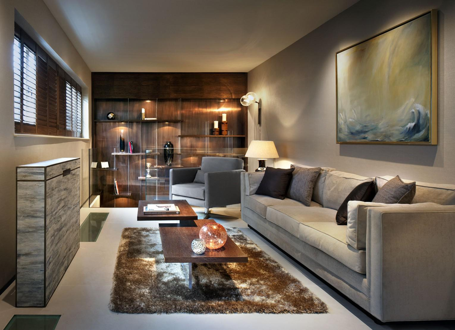 Image of: Narrow Living Room Design Tips