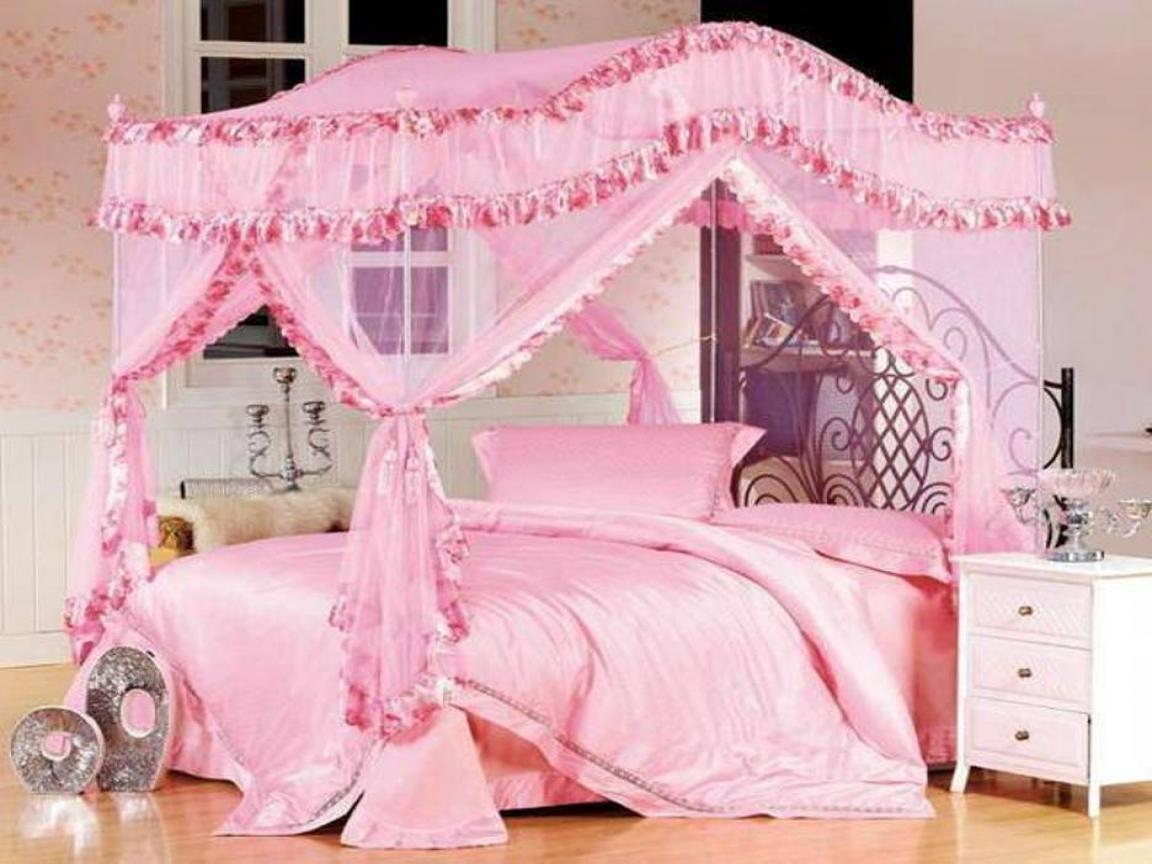 Image of: Princess Twin Bed