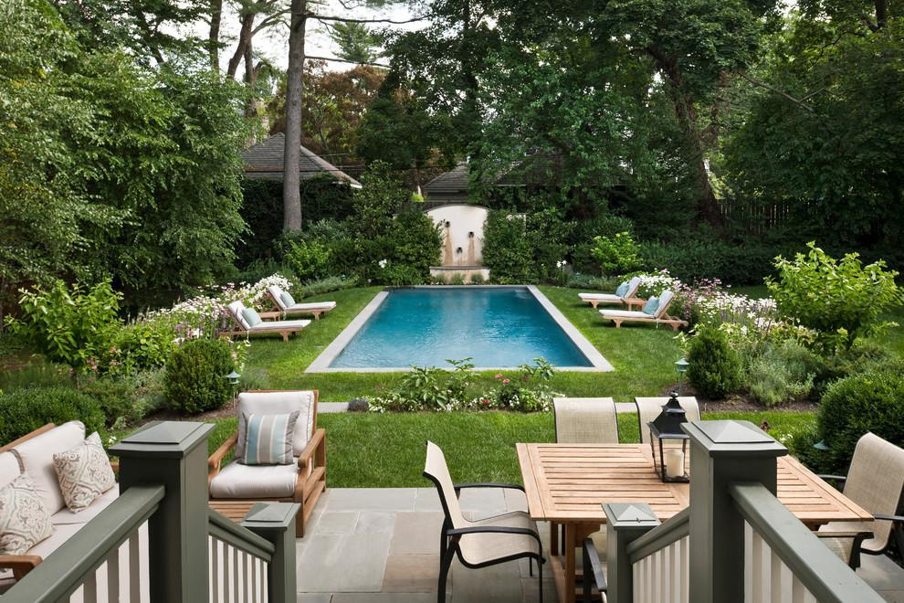 Image of: Small Backyard Ideas With Minimalist Swimming Pools