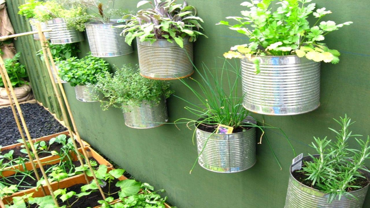 Image of: Small Space Gardening Ideas Pictures
