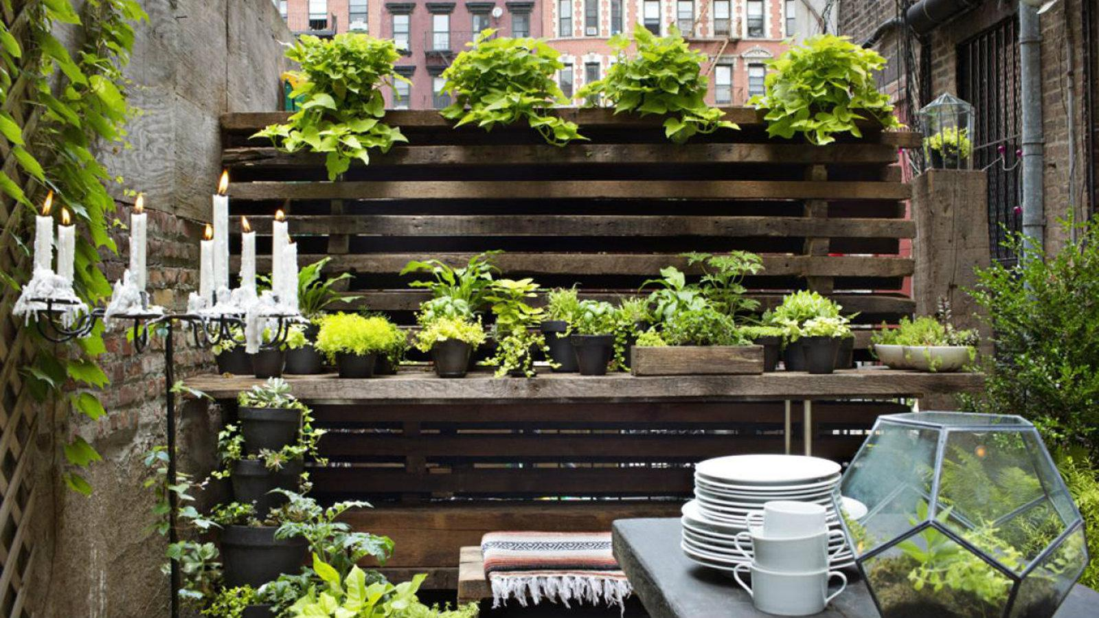 Image of: Small Space Gardening Ideas