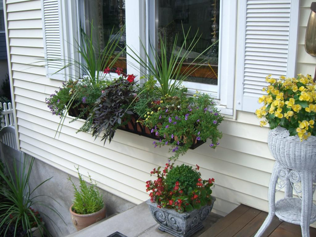 Image of: Window Box Ideas Without Plants