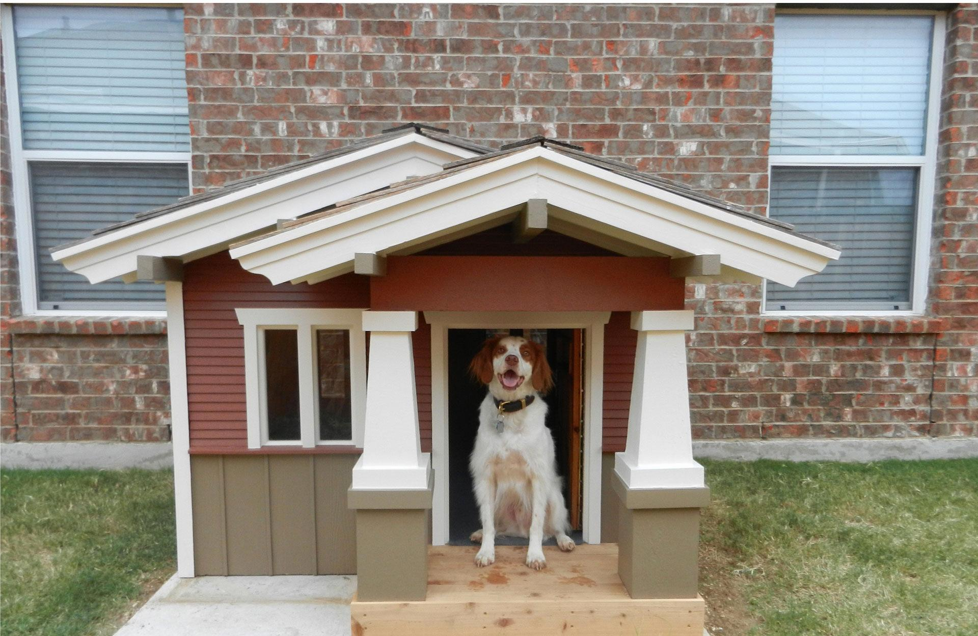 Image of: Awesome Pet House Style