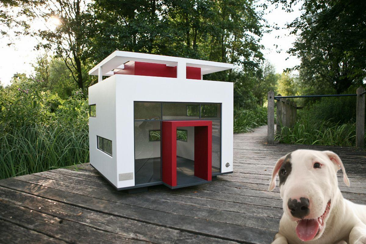 Image of: Awesome Pet House