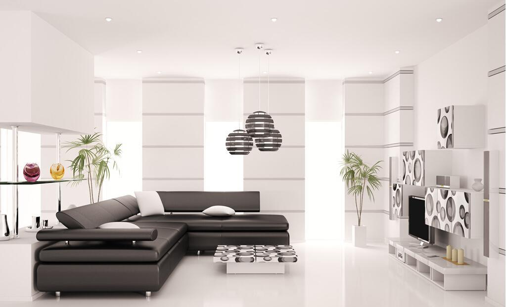 Image of: Black And White Living Room Style