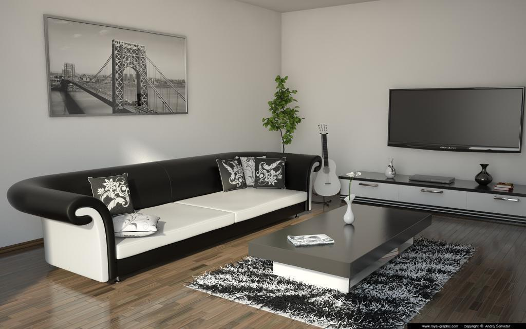 Image of: Elegant Black And White Living Room