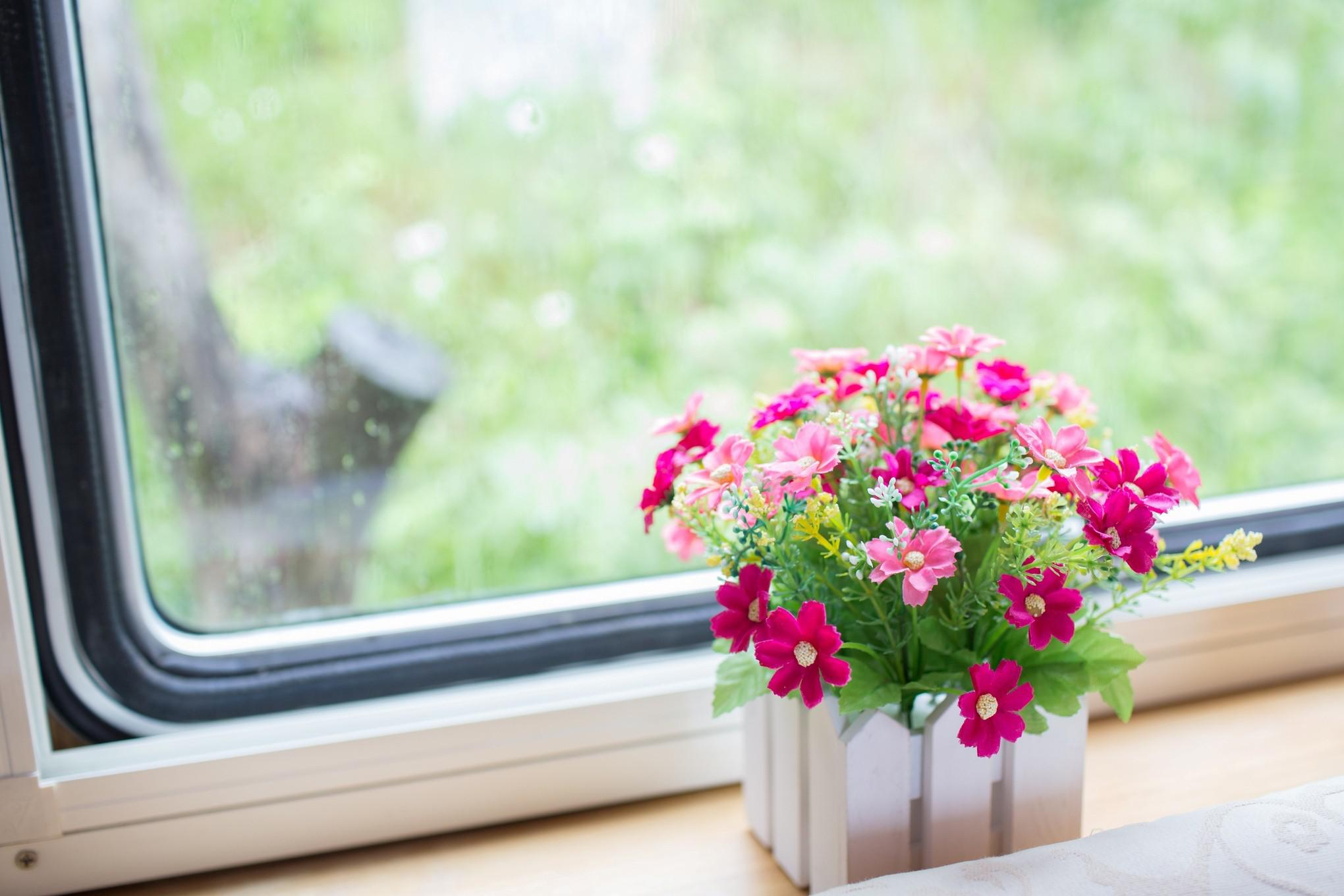 Image of: Flowers In The Window