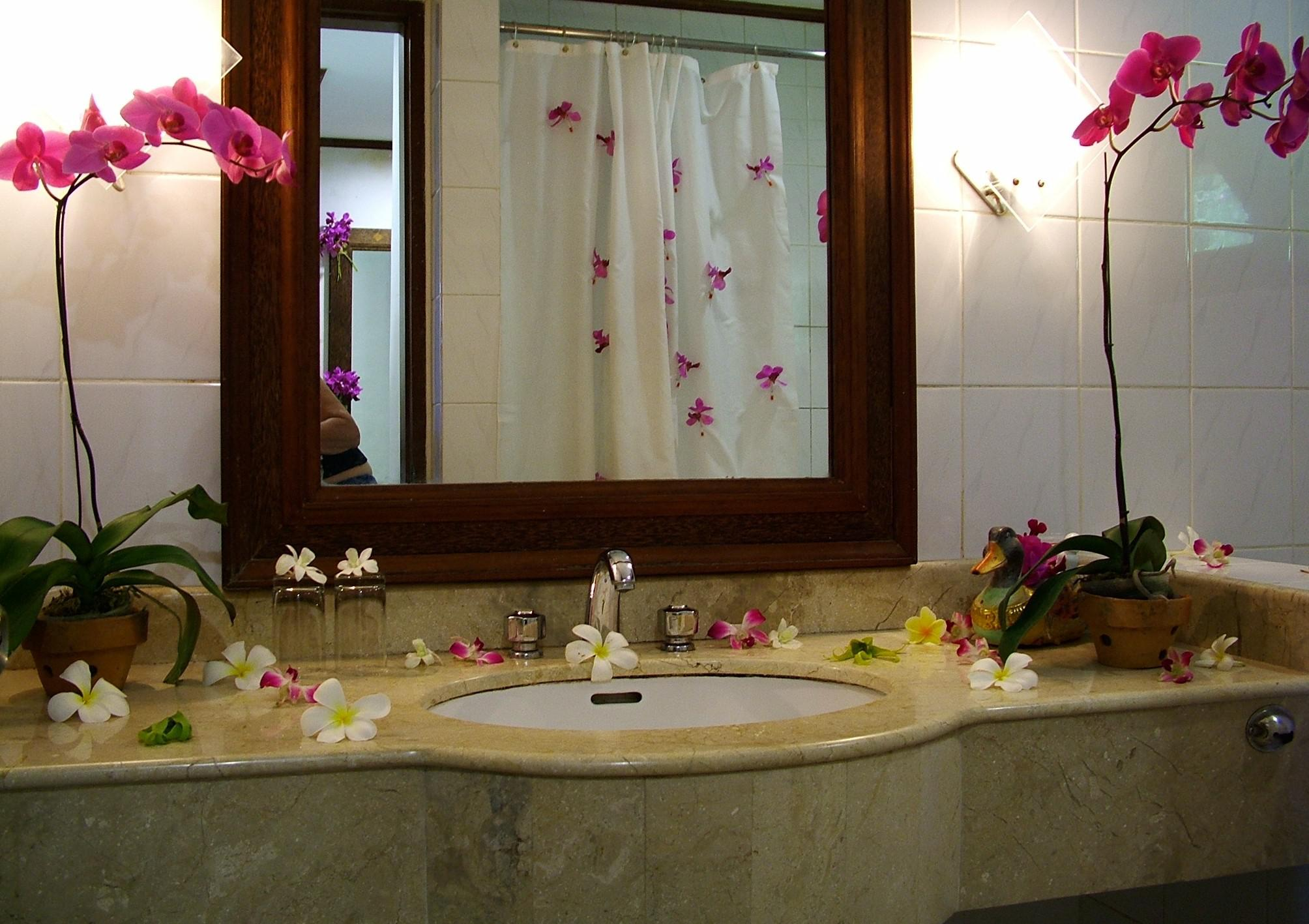 Image of: How To Decorate A Bathroom Counter