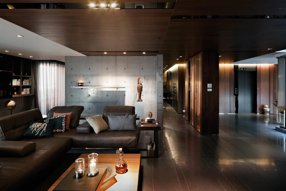 Image of: Modern Living Rooms Brown