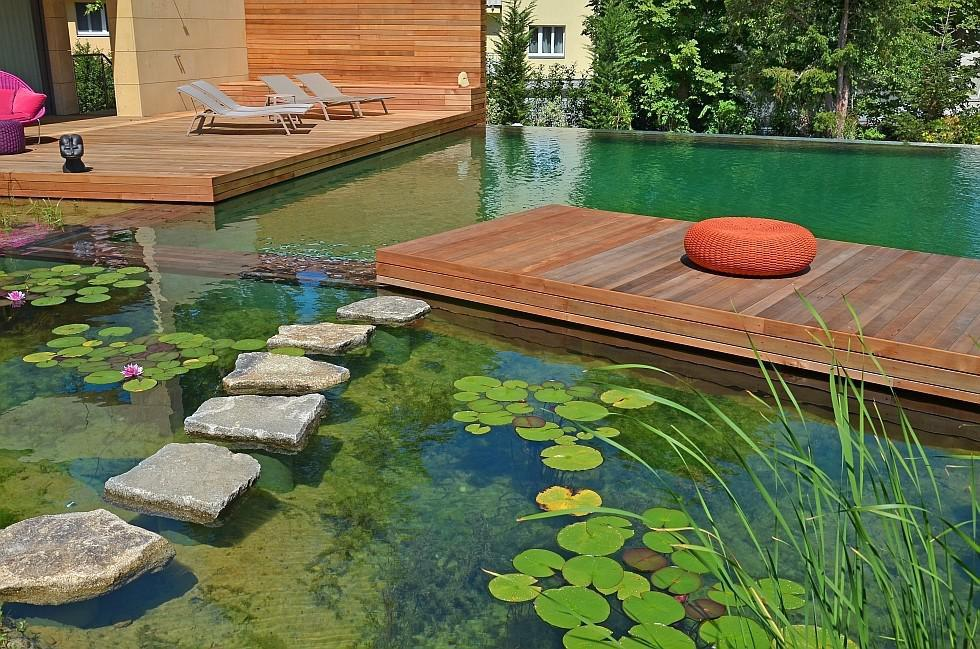 Image of: Natural Swimming Pool Plans