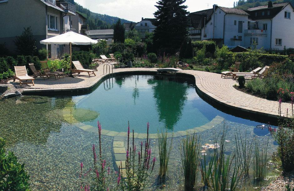 Image of: Natural Swimming Pools Design