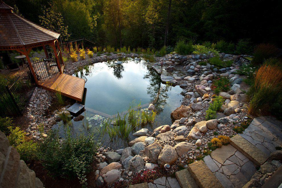 Image of: Natural Swimming Pools Diy