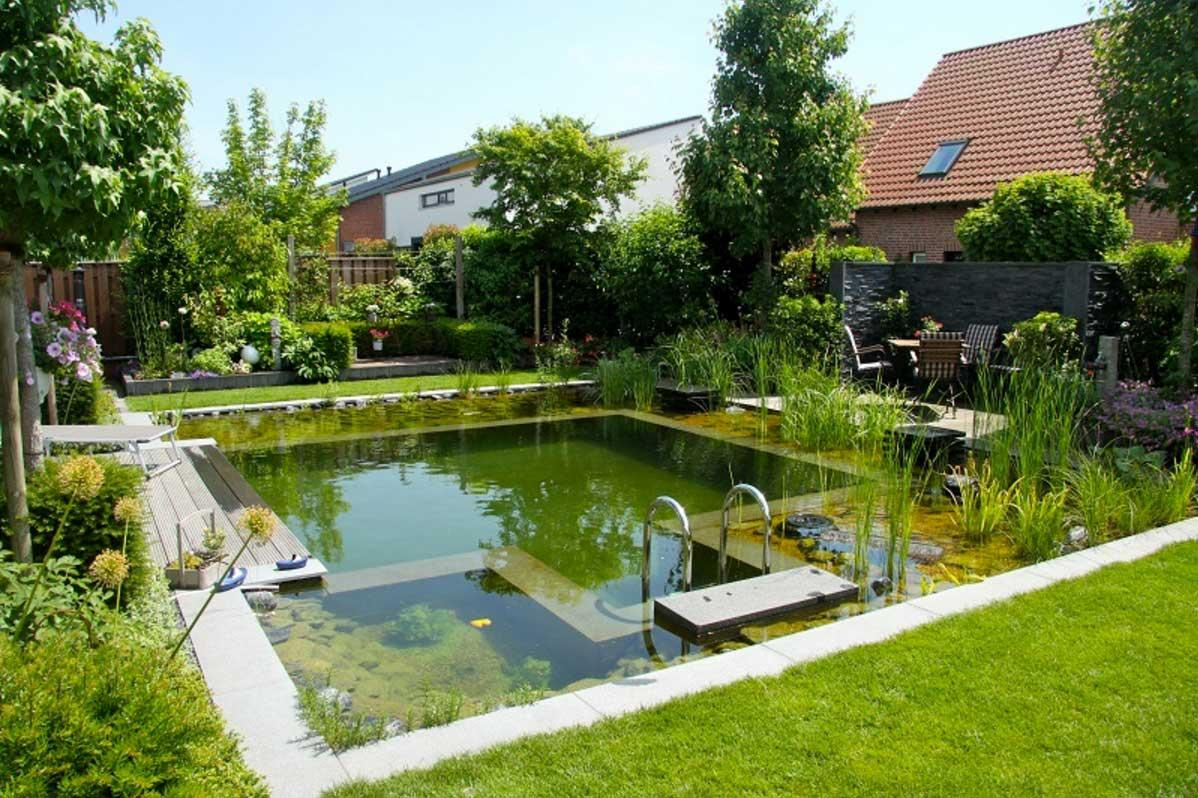 Image of: Natural Swimming Pools Ideas