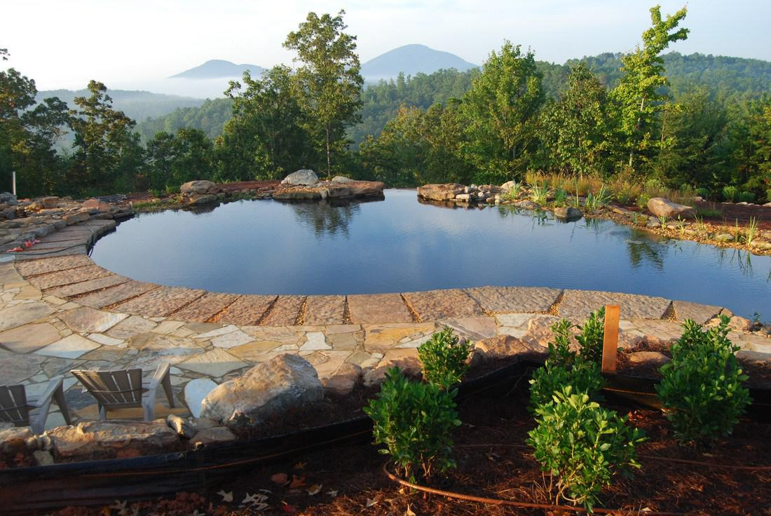 Image of: Natural Swimming Pools Style