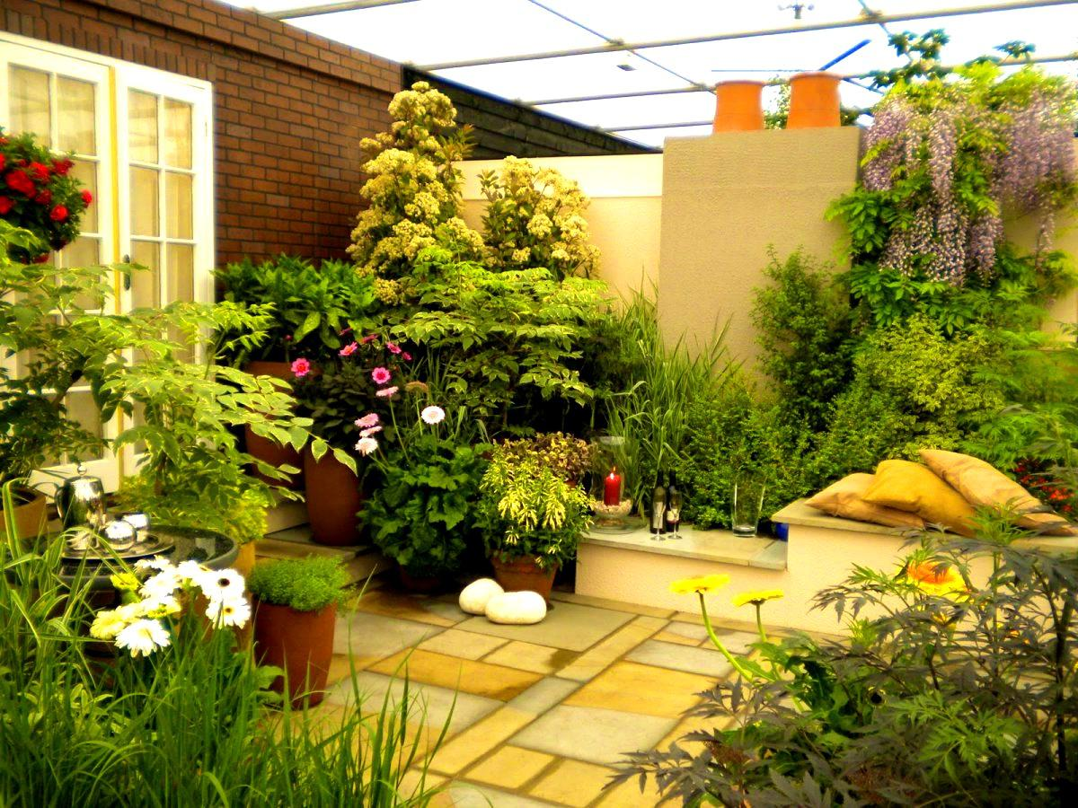 Image of: Vegetable Garden In Terrace